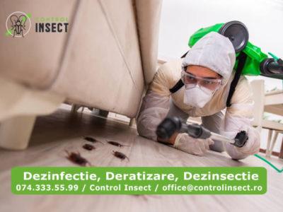 Control Insect, dezinfectie, dezinsectie