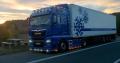 Servicii de Transport Internațional de Mărfuri
