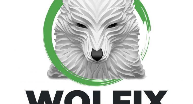 Wolfix – Web Design pentru afacerea ta