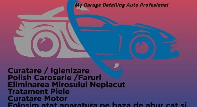 Detailing Auto Profesional